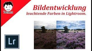 Lightroom: Landschaft mit leuchtenden Farben.