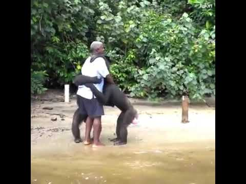 This is the way animals show their gratefulness to the human who saved them