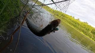 Взял таки первую щуку Опять сработал арбуз Поклевка возле берега голодная шустрая зубастая
