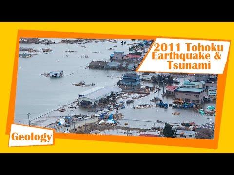 March 11, 2011 Tohoku Earthquake and Tsunami | Megathrust Earthquakes