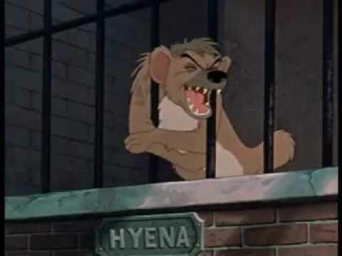Hyena laughing in Lady and The Tramp