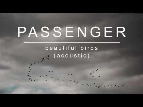 passenger- -beautiful-birds-(acoustic)-(official-album-audio)