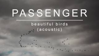[2.64 MB] Passenger | Beautiful Birds (Acoustic) (Official Album Audio)