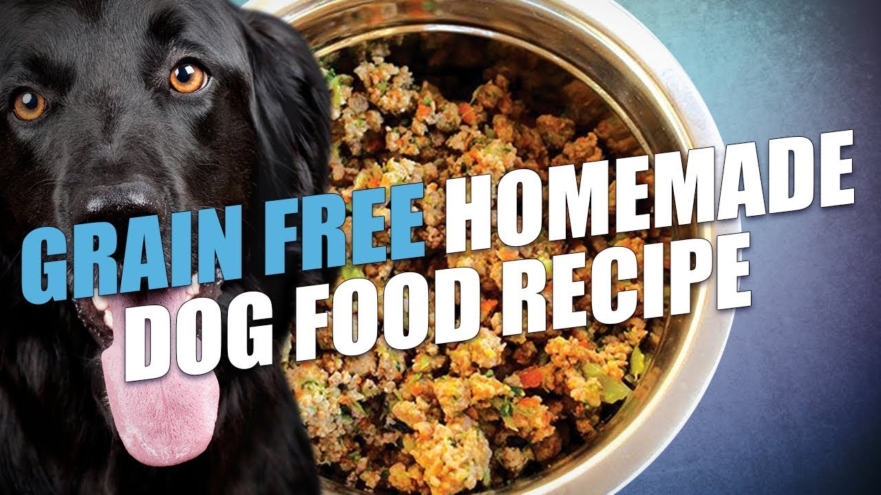 Grain free homemade dog food recipe video youtube grain free homemade dog food recipe video forumfinder Image collections