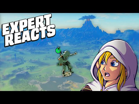 Zelda BOTW Expert Reacts To MORE Viral Clips