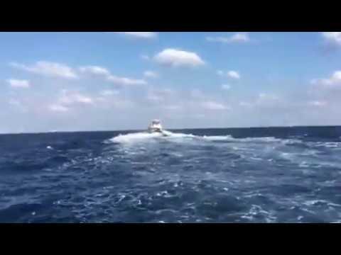 冬の沖縄ホエールウォッチングクジラを追う時のスピード感がたまらない