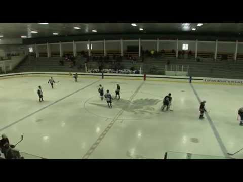 LHS Hockey vs Northbridge 01.18.15