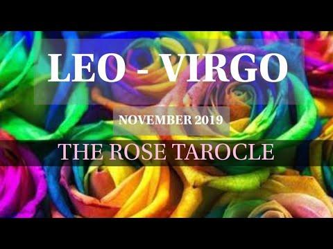 LEO-VIRGO(Cusp Of Exposure)   NOVEMBER 2019