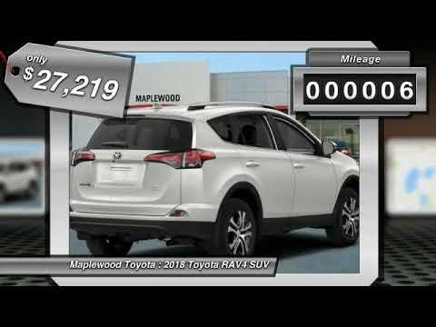 2018 Toyota RAV4 LE Maplewood, St Paul, Minneapolis, Brooklyn Park, MN J10326
