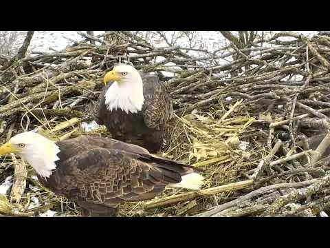 Decorah North Eagles,Short&Sweet Visit From Mr&Mrs North 1/20/18