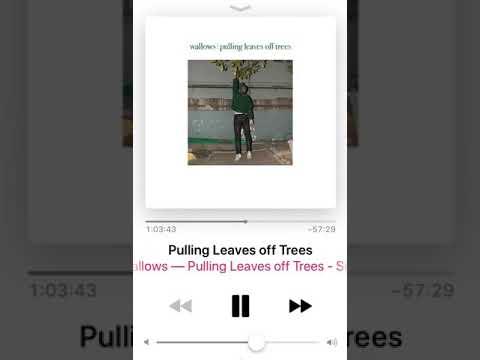 Troye Sivan on Apple Beats 1 Radio Last Week Mp3