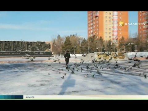 """Aviator"" №7 (08.01.2017) - Kazakh TV"