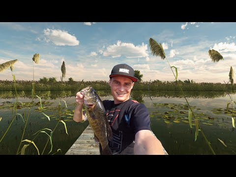 Thumbnail: WORLDS MOST REALISTIC FISHING GAME!? (Fishing Planet)
