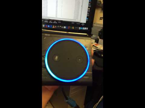 Amazon Echo Spa Version
