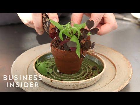 Inside One Of The World's Best Restaurants, Noma
