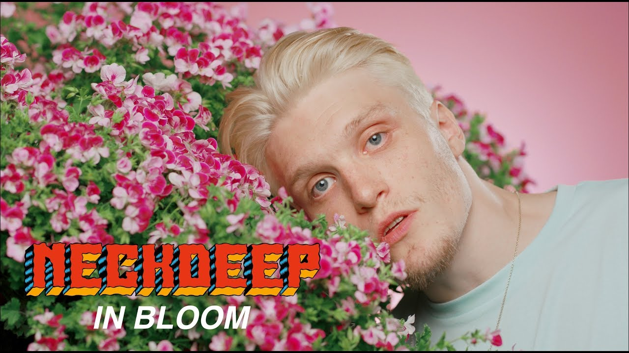 Neck Deep - In Bloom (Official Music Video) #1