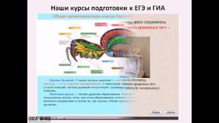 Портал дистанционного образования Education-web