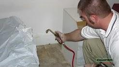 Bed Bug Pest Control Bryn Mawr PA | Eliminate Bed Bugs Bryn Mawr PA