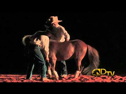 Double Dan Horsemanship - Cowboy Dreams