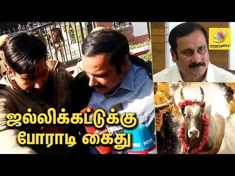 Anbumani Ramadoss arrested for protesting in Delhi on Jallikattu Issue