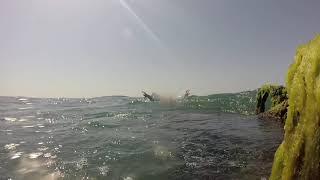 Детишки-пловцы