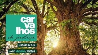 Exposição da Palavra | Is 6:1-3  - Carvalhos de Justiça - Rev. André Dantas
