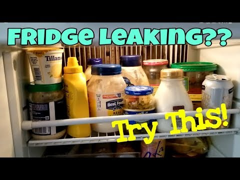 If Your RV Refrigerator Is Leaking Water, Watch This!!