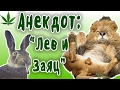 ЛЕВ и ЗАЯЦ Пошлые анекдоты про животных mp3