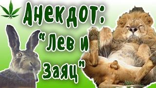 ЛЕВ и ЗАЯЦ.... Пошлые анекдоты про животных
