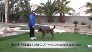 How durable is the JAWZ dog frisbee disc? - Watch this!!