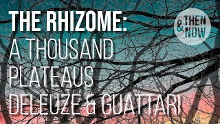 The Rhizome - A Thousand Plateaus, Deleuze and Guattari