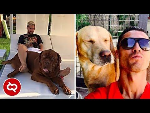 10 Pesepak Bola Terkenal yang Punya Anjing Peliharaan Paling Mahal