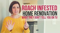 My Cockroach Infestation Home Renovation (6 Treatments Later!)