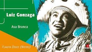 Baixar Luiz Gonzaga - Asa Branca - Flauta Doce (Notas)