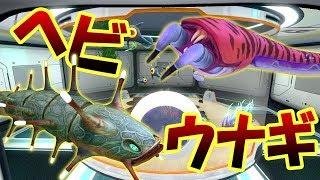 ドラゴン水族館にヘビと電気ウナギを連れてきたい!! 海しかない未知の惑星でサバイバル生活はじめます! Subnautica #22