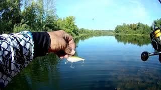И опять на рыбалку на новое озеро Эх если бы не крючки
