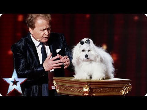 Marc Métral and Miss Wendy wow the crowd | Semi-Final 4 | Britain's Got Talent 2015