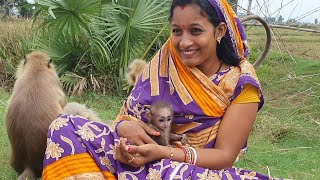 How an animal mother langoor trust very much to this human mother and handover her little baby