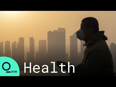 A Year After Wuhan, There's No End in Sight of the Coronavirus Pandemic - Bloomberg Quicktake: Now