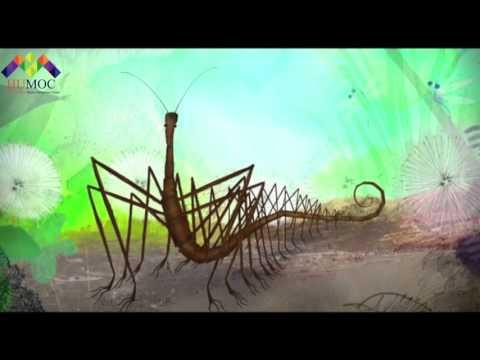 Millipede Cartoon Film  (( Dbbed into Farsi in Radio Studio HUMOC ))