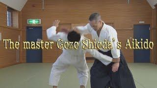 Aikido-Hayabusa HP:https://www.aikido-hayabusa.com/ Aikido-Hayabus...