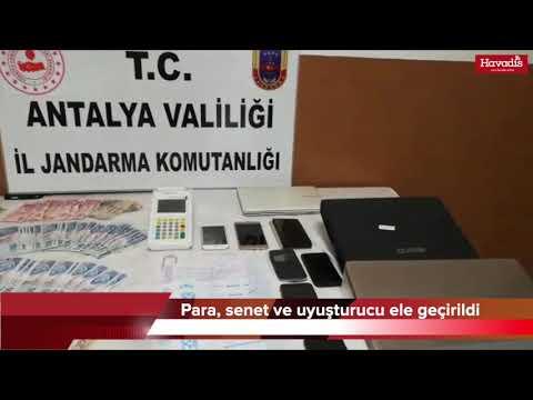 Alanya'da Yasa Dışı Bahis Operasyonu : 11 Gözaltı