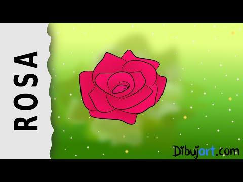 cómo-dibujar-una-rosa-#6---serie-de-dibujos-de-rosas