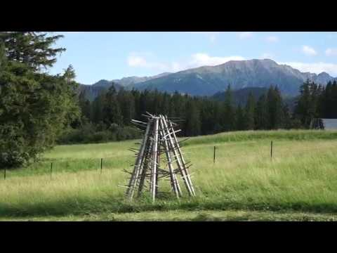 Tatry w czasach pandemii | Maj 2020 | ŁÓDZKIM OKIEM from YouTube · Duration:  2 minutes 4 seconds
