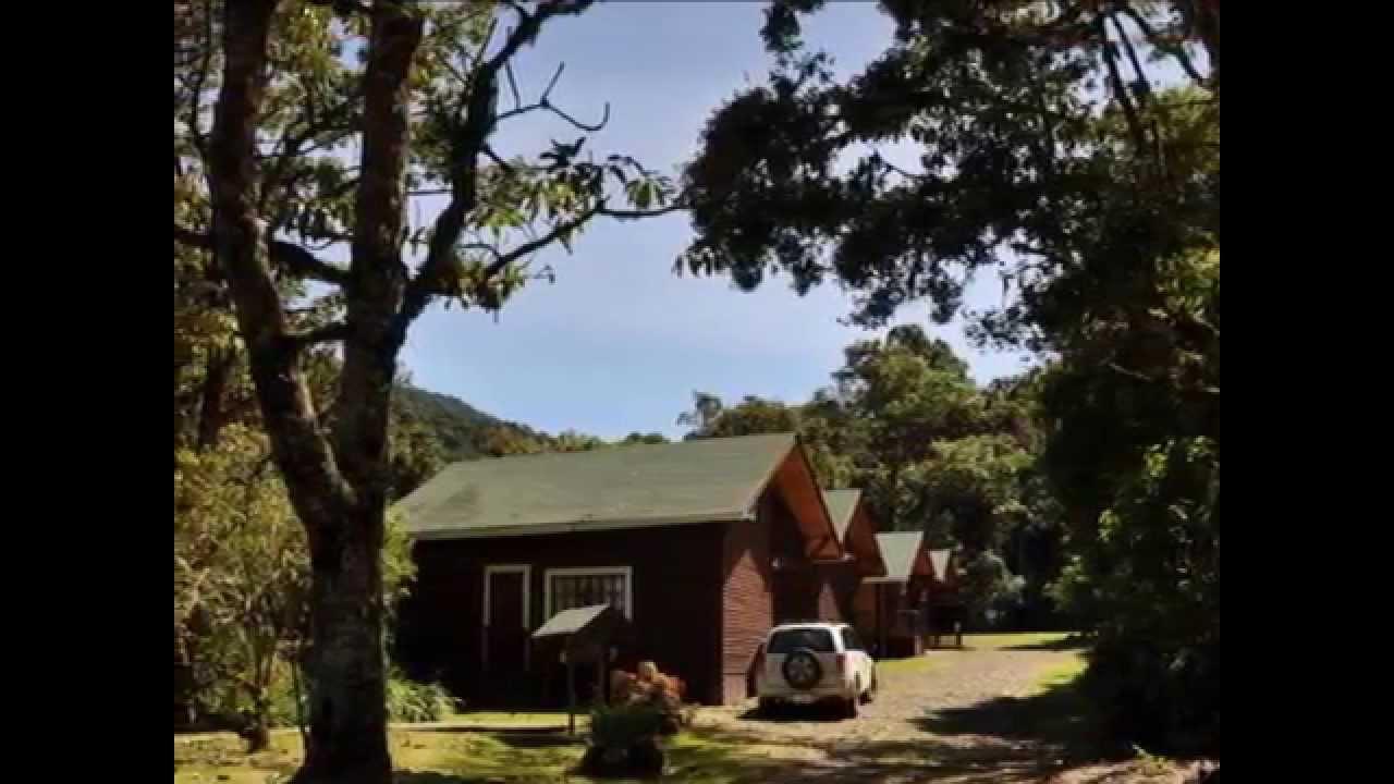 Suenos Del Bosque Lodge Dota San Jose Costa Rica Www Travelalot Net Youtube