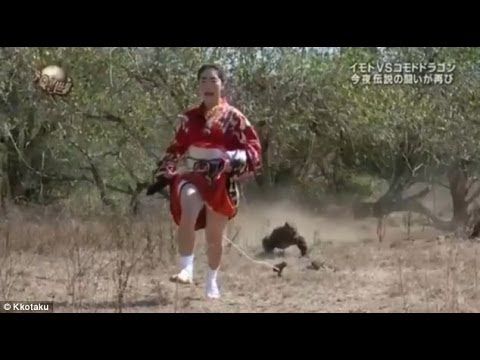 Woman tied to her has to outrun giant lizard in bizarre Japanese TV show