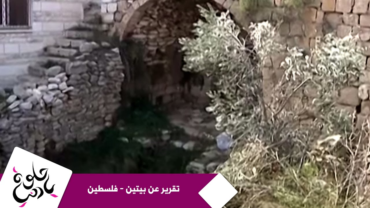 حلوة يا دنيا - تقرير عن بيتين - فلسطين