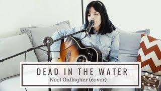 Dead in the Water - Noel Gallagher