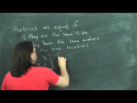 matrices video 1
