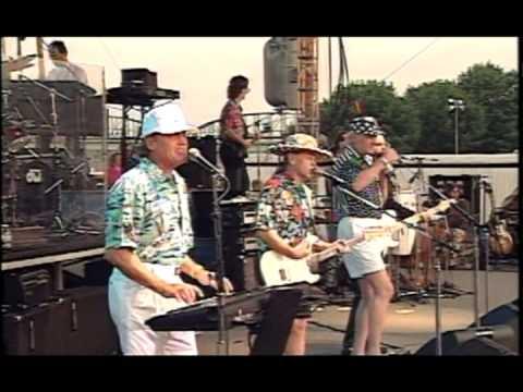 The Beach Boys - Catch A Wave Live